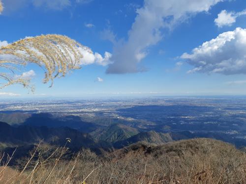 大山 ハイキング